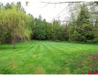 Photo 8: 21803 6TH Avenue in Langley: Campbell Valley House for sale : MLS®# F2907403
