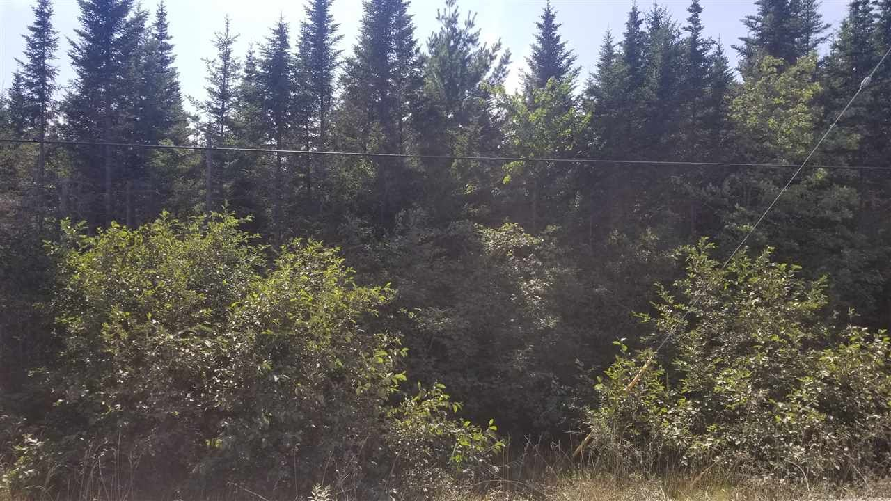 Photo 4: Photos: Lot 3 Moose River Road in Lindsay Lake: 35-Halifax County East Vacant Land for sale (Halifax-Dartmouth)  : MLS®# 201921609