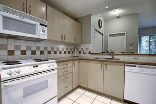 Photo 16: 113 1108 6 Avenue SW in Calgary: Downtown West End Apartment for sale : MLS®# C4299733