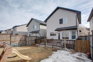 Photo 24: 116 SILVERADO PLAINS View SW in Calgary: Silverado Detached for sale : MLS®# A1087067