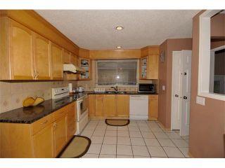 Photo 11: 3307 48 Street NE in Calgary: Whitehorn House for sale : MLS®# C4003900