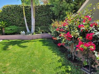Photo 58: 10434 Pounds Avenue in Whittier: Residential for sale (670 - Whittier)  : MLS®# PW21179431