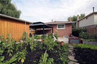 Photo 11: 704 Coulson Avenue in Milton: Timberlea House (Bungalow) for sale : MLS®# W3620366