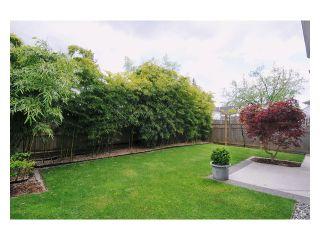 Photo 19: 11674 206B Street in Maple Ridge: Southwest Maple Ridge House for sale : MLS®# V1049225
