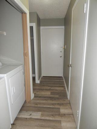 Photo 34:  in Edmonton: Zone 29 Condo for sale : MLS®# E4248069