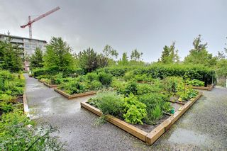 Photo 36: 801 38 9 Street NE in Calgary: Bridgeland/Riverside Apartment for sale : MLS®# A1017164