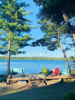 Photo 23: 519 Kill Dog Cove Road in Parkdale: 405-Lunenburg County Residential for sale (South Shore)  : MLS®# 202111106