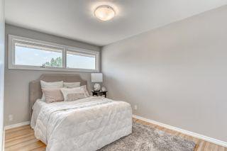Photo 23: 9104 156 Street NW in Edmonton: Zone 22 House for sale : MLS®# E4254125