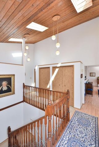Photo 18: 3301 Argyle Pl in : SE Camosun House for sale (Saanich East)  : MLS®# 873581