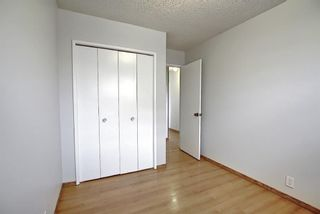 Photo 14: 4259 49 Street NE in Calgary: Whitehorn Detached for sale : MLS®# A1131311
