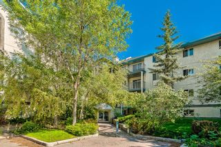 Photo 2: 103 11 Dover Point SE in Calgary: Dover Apartment for sale : MLS®# A1144552