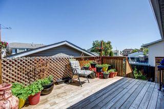 Photo 20: 148 VENTURA Way NE in Calgary: Vista Heights Detached for sale : MLS®# A1052725
