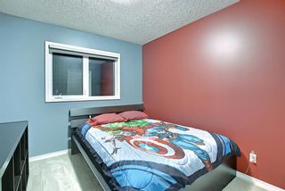 Photo 24: 328 Templeton Circle NE in Calgary: Temple Detached for sale : MLS®# A1074791