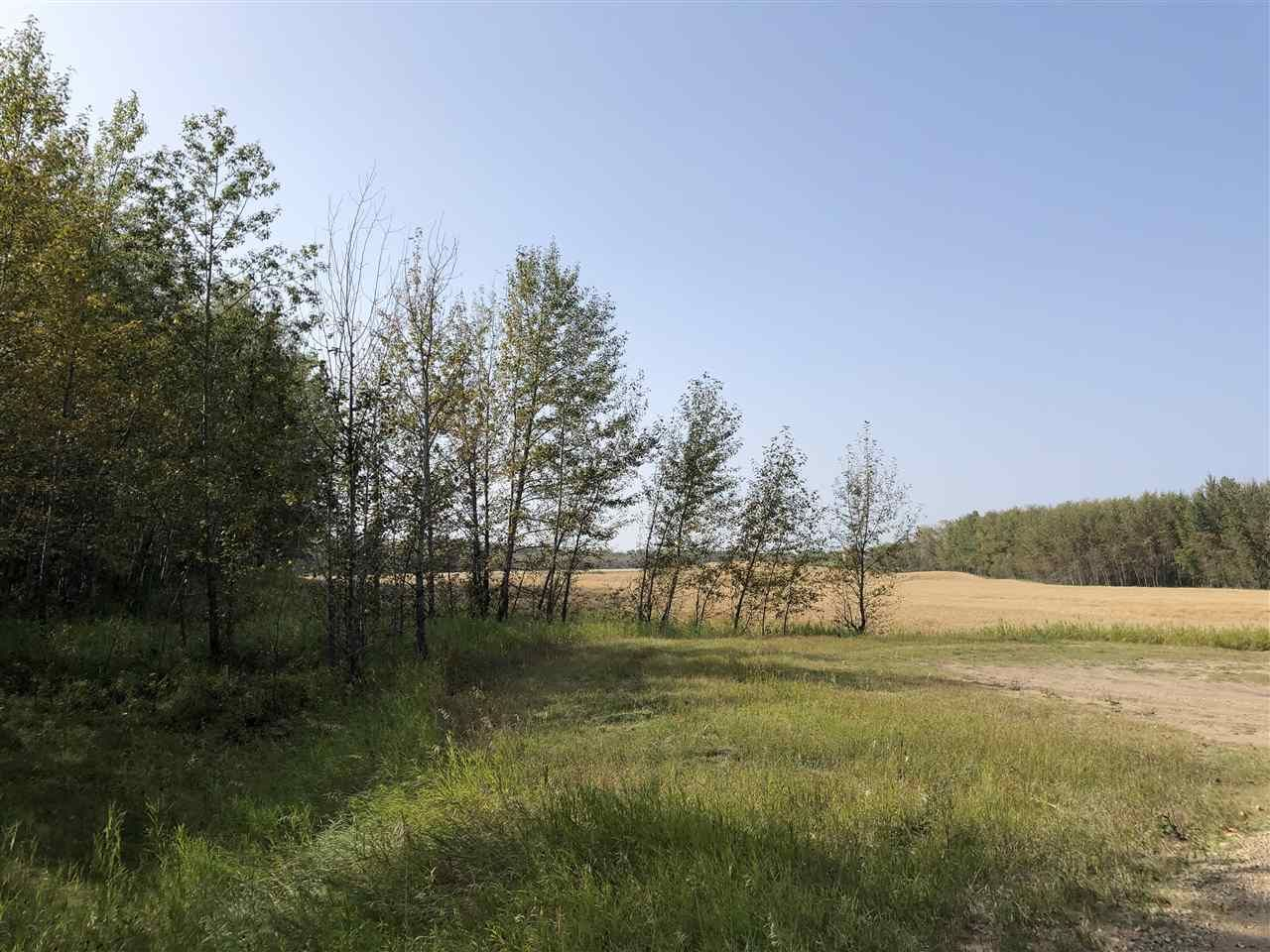 Photo 5: Photos: 0 26225 TWP Rd 511: Rural Parkland County Rural Land/Vacant Lot for sale : MLS®# E4216203