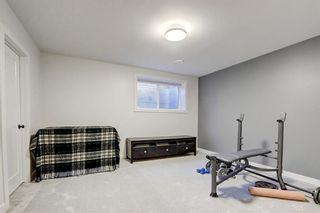 Photo 19: 7655 35 Avenue NW in Calgary: Bowness Semi Detached for sale : MLS®# A1056276