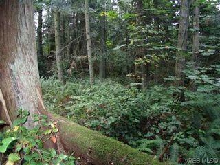 Photo 8: 10865 Fernie Wynd RD in NORTH SAANICH: Land for sale : MLS®# 320358