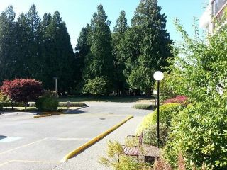"""Photo 8: # 209 33490 COTTAGE LN in Abbotsford: Central Abbotsford Condo for sale in """"Cottage Lane"""""""