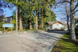"""Photo 2: 49 12711 64 Avenue in Surrey: West Newton Townhouse for sale in """"PALETTE ON THE PARK"""" : MLS®# R2560008"""