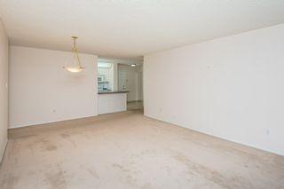 Photo 14: 123 10511 42 Avenue in Edmonton: Zone 16 Condo for sale : MLS®# E4236699