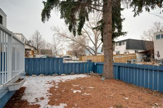Photo 26: 43 Doverdale Mews SE in Calgary: Dover Row/Townhouse for sale : MLS®# A1052608