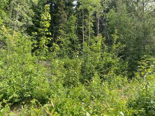 "Photo 6: LOT 6 CHIEF LAKE Road in Prince George: Nukko Lake Land for sale in ""CHIEF LAKE"" (PG Rural North (Zone 76))  : MLS®# R2464872"