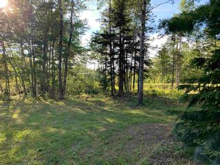 Photo 3: Lot 31 Highway 14 in Nine Mile River: 105-East Hants/Colchester West Vacant Land for sale (Halifax-Dartmouth)  : MLS®# 202118383