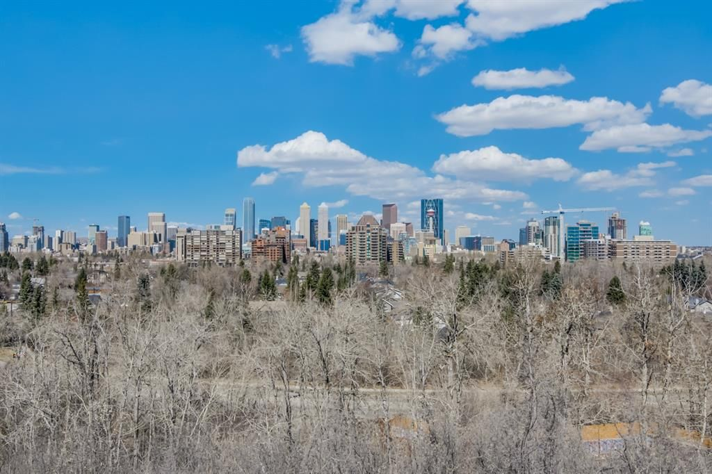 Main Photo: 313 33 Avenue SW in Calgary: Parkhill Detached for sale : MLS®# A1046049