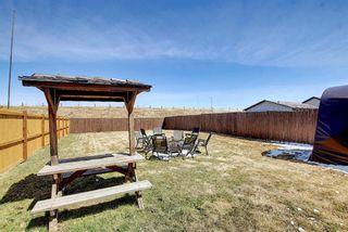 Photo 33: 136 Abingdon Way NE in Calgary: Abbeydale Detached for sale : MLS®# A1097346