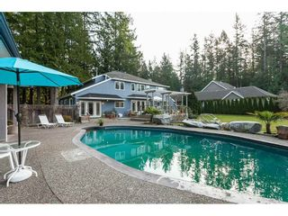 Photo 5: 2027 204A Street in Langley: Brookswood Langley House for sale : MLS®# R2490874