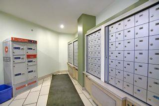 Photo 36: 321 6315 135 Avenue in Edmonton: Zone 02 Condo for sale : MLS®# E4255490