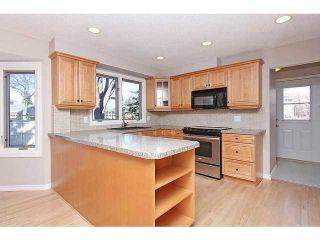 Photo 6: 119 LAKE MEAD Place SE in CALGARY: Lk Bonavista Estates Residential Detached Single Family for sale (Calgary)  : MLS®# C3563863