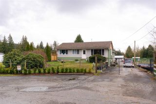 Main Photo: 24248 116 Avenue in Maple Ridge: Cottonwood MR House for sale : MLS®# R2540275