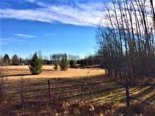"""Photo 10: LOT 1 SMAASLET Road in Prince George: Beaverley Land for sale in """"BEAVERLEY"""" (PG Rural West (Zone 77))  : MLS®# R2323246"""