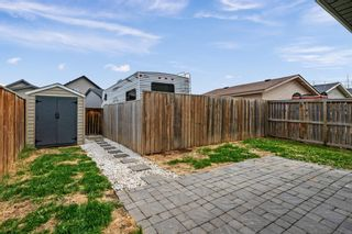 Photo 19: 273 Cranberry Close SE in Calgary: Cranston Detached for sale : MLS®# A1109006