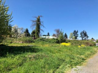 Photo 3: 470 Irwin St in : Na South Nanaimo Land for sale (Nanaimo)  : MLS®# 873620