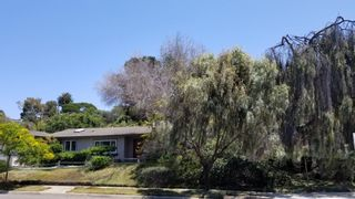 Photo 27: POINT LOMA House for sale : 3 bedrooms : 3702 Del Mar Ave in San Diego