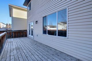 Photo 49: 74 Coventry Crescent NE in Calgary: Coventry Hills Detached for sale : MLS®# A1078421