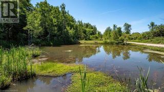 Photo 4: 742660 4B Sideroad in Chatsworth (Twp): Agriculture for sale : MLS®# 40130291