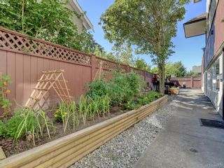 Photo 21: 5 954 Queens Ave in : Vi Central Park Row/Townhouse for sale (Victoria)  : MLS®# 845721