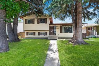 Photo 1: 211 Templewood Road NE in Calgary: Temple Detached for sale : MLS®# A1124451