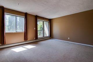 Photo 10: 303 10432 76 Avenue NW in Edmonton: Zone 15 Condo for sale : MLS®# E4262439