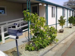 Photo 25: SANTEE Manufactured Home for sale : 2 bedrooms :