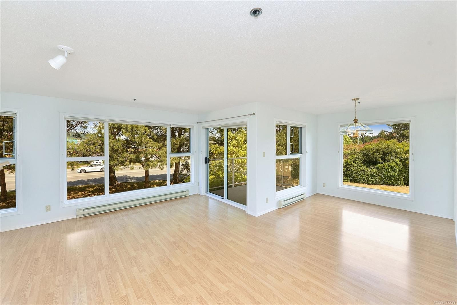 Main Photo: 207 3009 Brittany Dr in : Co Triangle Condo for sale (Colwood)  : MLS®# 877239