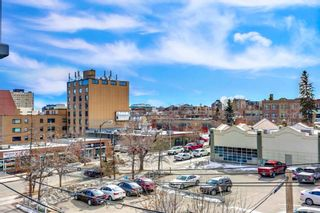 Photo 27: 302 1501 6 Street SW in Calgary: Beltline Apartment for sale : MLS®# A1040725