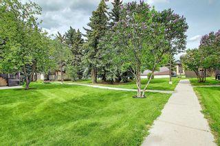Photo 36: 139 Cedar Springs Gardens SW in Calgary: Cedarbrae Row/Townhouse for sale : MLS®# A1059547