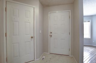 Photo 40: 14 Everglade Drive SE: Airdrie Semi Detached for sale : MLS®# A1067216