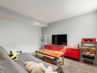 Photo 34: 17 ROYAL ELM Way NW in Calgary: Royal Oak Detached for sale : MLS®# A1034855