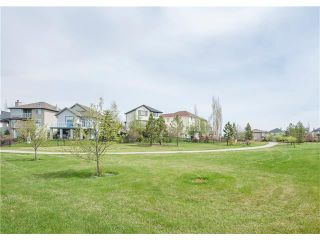 Photo 33: 160 CRANWELL Crescent SE in Calgary: Cranston House for sale : MLS®# C4116607