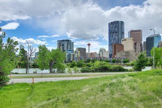 Photo 30: 304 414 MEREDITH Road NE in Calgary: Crescent Heights Apartment for sale : MLS®# A1119417