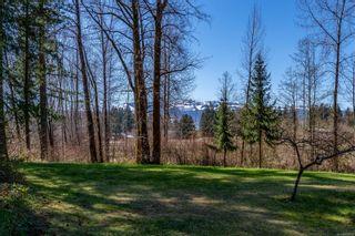 Photo 49: 8439 Island Hwy in Black Creek: CV Merville Black Creek House for sale (Comox Valley)  : MLS®# 872787